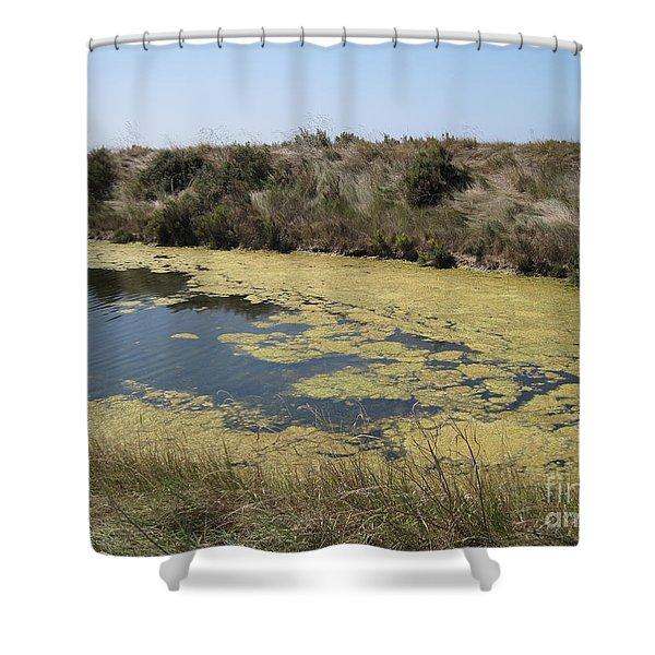 Ile De Re - Marshes Shower Curtain