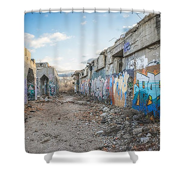 Illegal Art Museum Shower Curtain