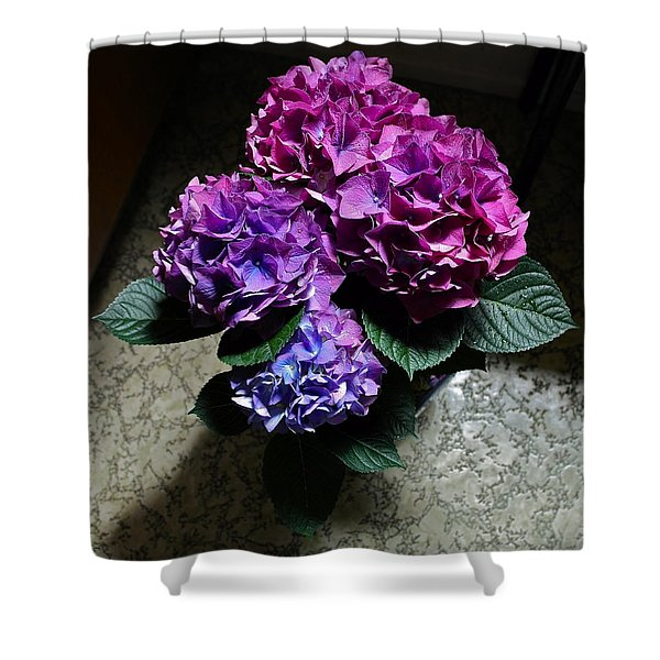 Illuminated Hydrangea Shower Curtain