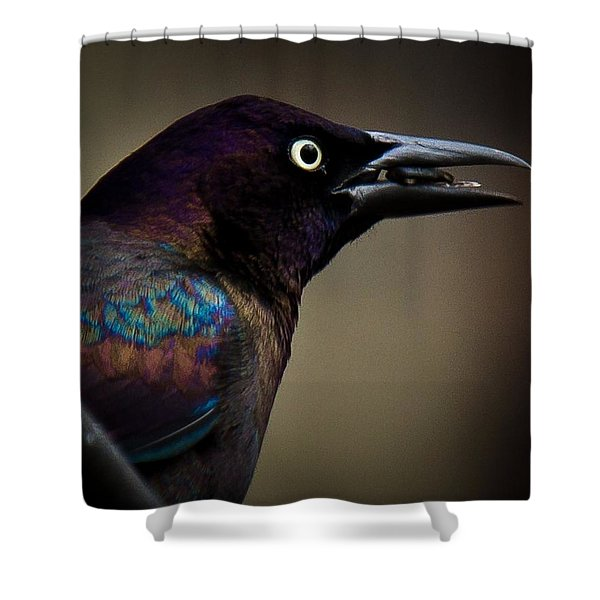 Shower Curtain featuring the photograph I'm Not Done Eating by Robert L Jackson
