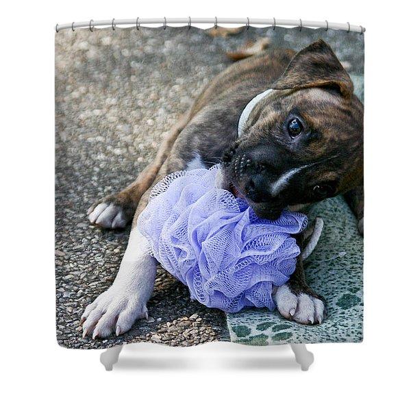 Imma Git U    Pit Bull Pup Shower Curtain