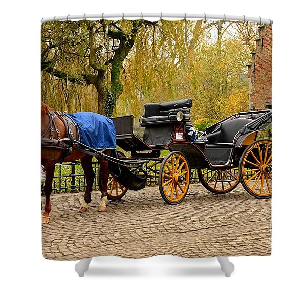 Immaculate Horse And Carriage Bruges Belgium Shower Curtain