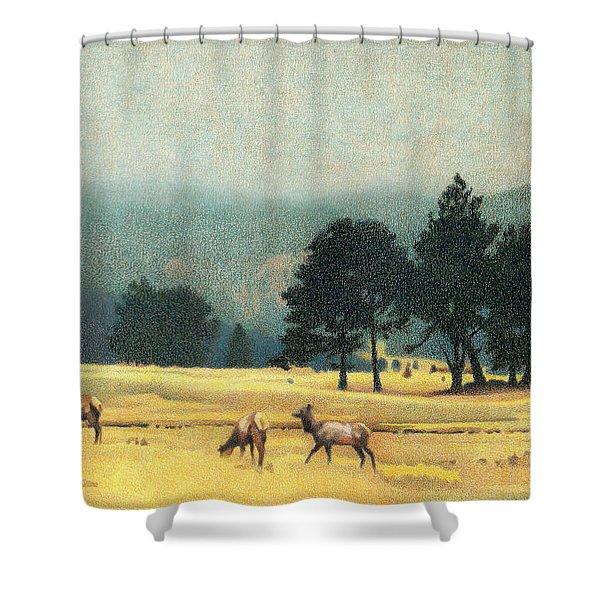 Impression Evergreen Colorado Shower Curtain
