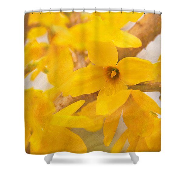Shower Curtain featuring the photograph Impressionist Forsythia by Jemmy Archer