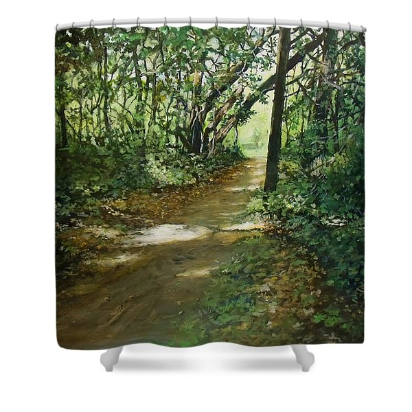 In And Out Of The Shadows Shower Curtain