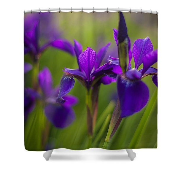 In Beautiful Company Shower Curtain