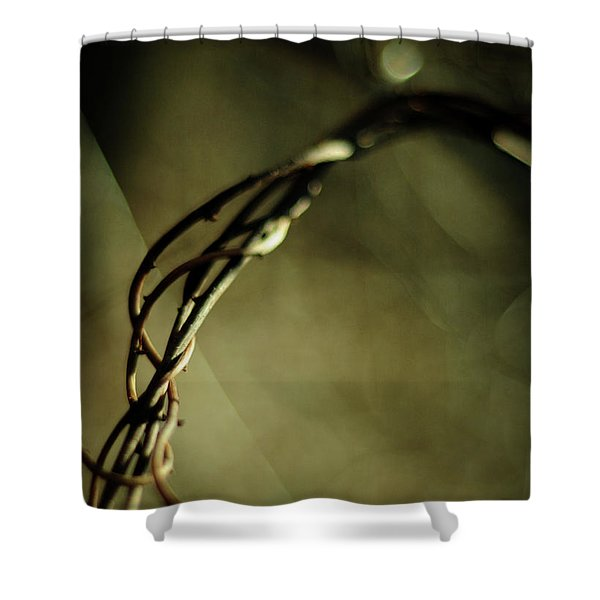 In Shadows And Light Shower Curtain
