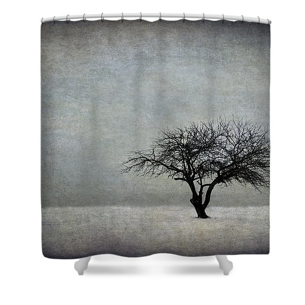 In The Bleak Of Midwinter Shower Curtain
