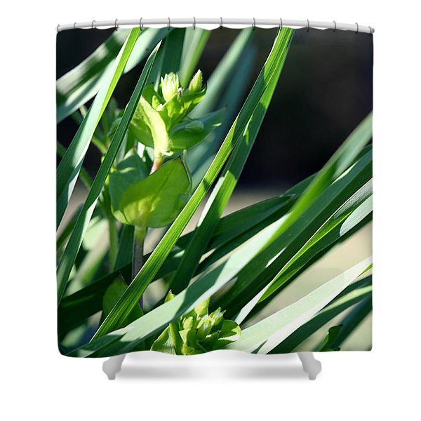In The Grass Shower Curtain