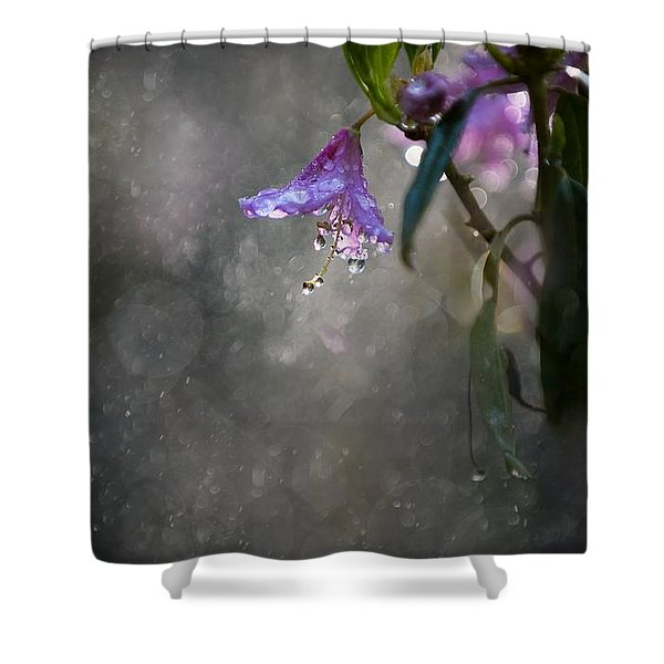 Shower Curtain featuring the photograph In The Morning Rain by Jaroslaw Blaminsky