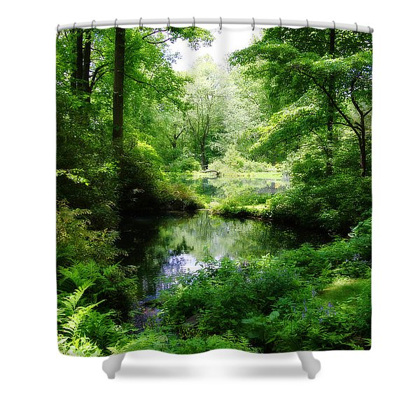In The Stillness Shower Curtain