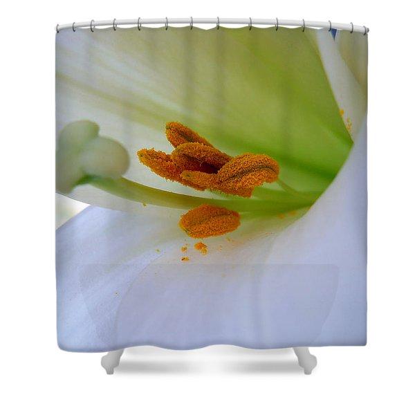Inner Secrets Shower Curtain