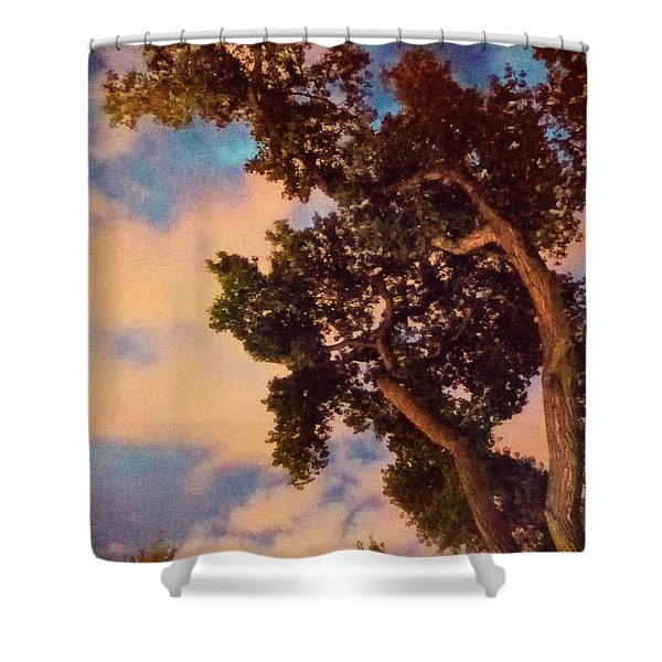 Inspired By Maxfield Parrish Shower Curtain