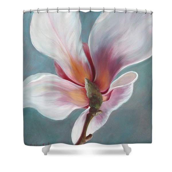 Shower Curtain featuring the painting Intimate Apparel by Sandi Whetzel