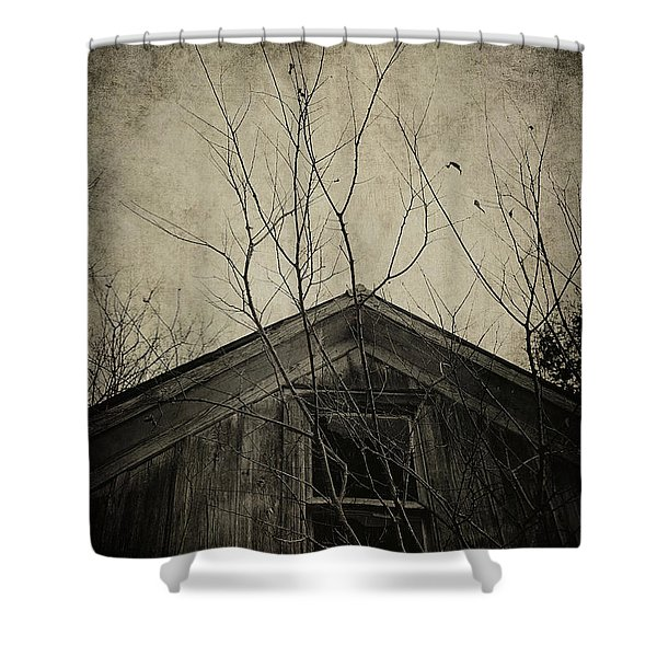Into The Dark Past Shower Curtain