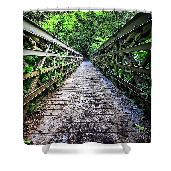 Into The Jungle  Shower Curtain