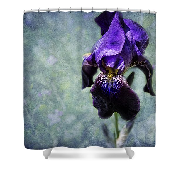 Iris - Purple And Blue - Flowers Shower Curtain