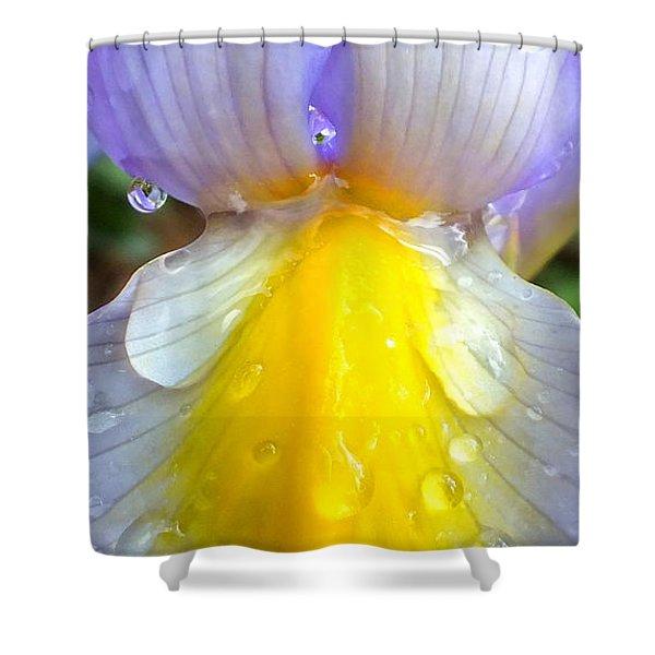 Iris Flower Petal Upclose Shower Curtain
