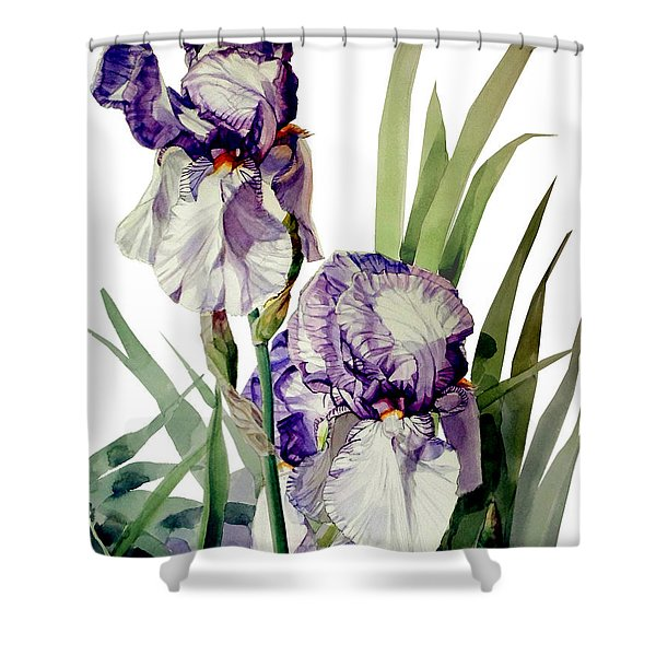 Watercolor Of A Tall Bearded Iris In Violet And White I Call Iris Selena Marie Shower Curtain