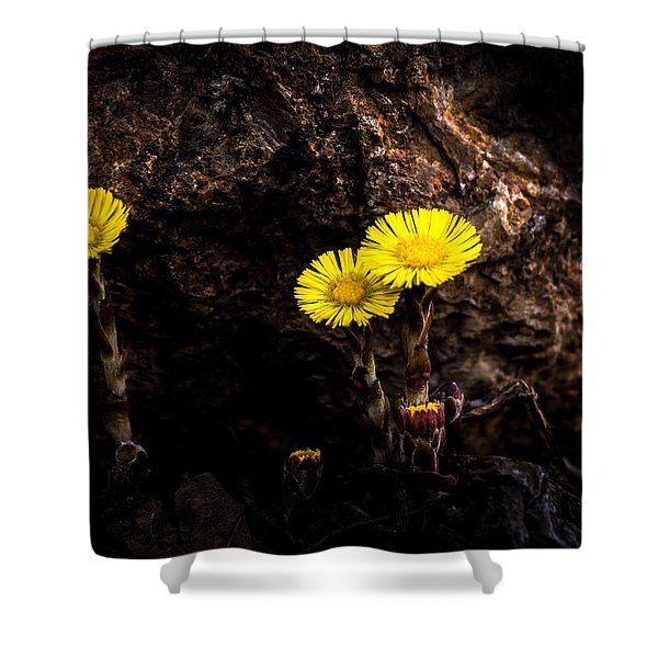 It Only Takes A Little Bit Of Light Shower Curtain