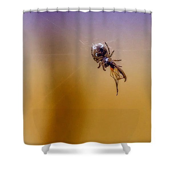 Itsy Bitsy Death Shower Curtain