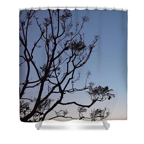 Jacaranda Sunset Shower Curtain