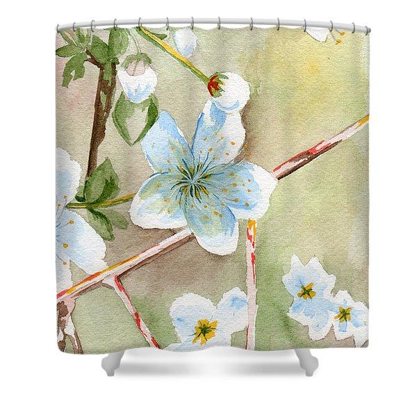 Jane's Apple Blossoms 2 Shower Curtain