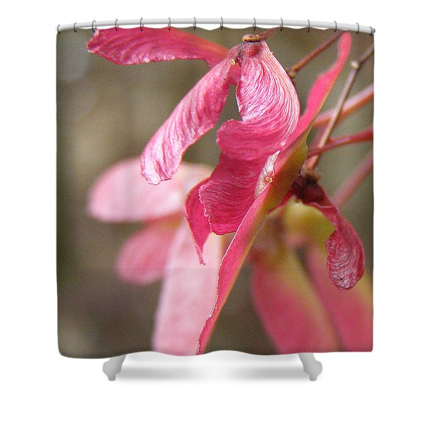 Japanese Maple Keys Shower Curtain
