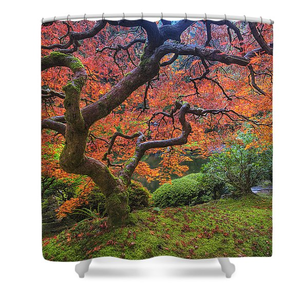Japanese Maple Tree Shower Curtain