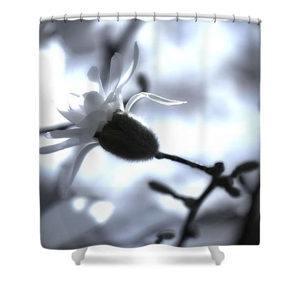 Jasmine Blossom Shower Curtain