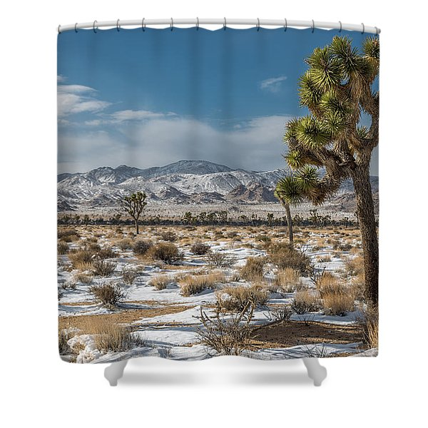 Josgua Tree In Snow Shower Curtain