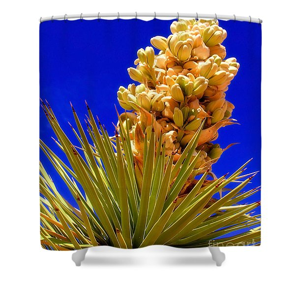 Joshua Bloom By Diana Sainz Shower Curtain