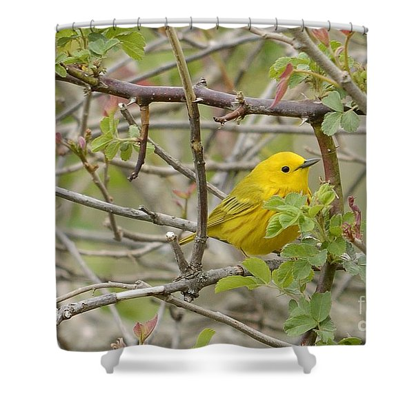 Just Brightening Your Day Shower Curtain