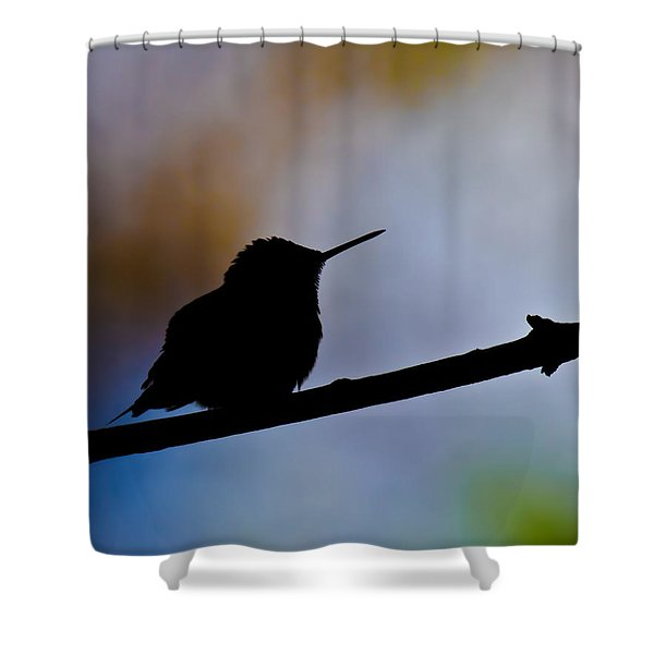 Shower Curtain featuring the photograph Just Chillin by Robert L Jackson