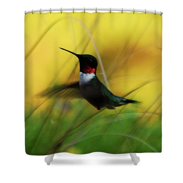 Just Flying Shower Curtain