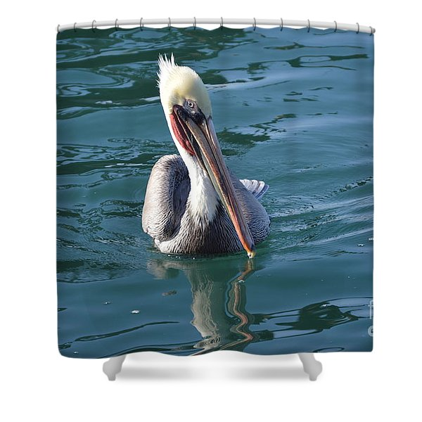 Shower Curtain featuring the photograph Just Wading by Laurie Lundquist