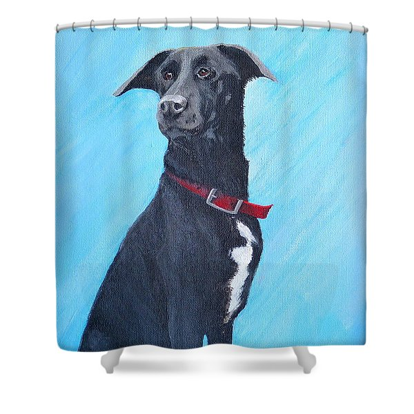 Kahlua Shower Curtain