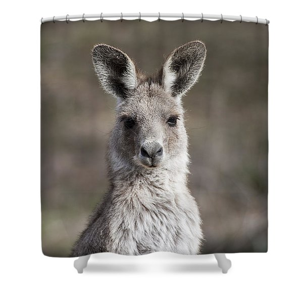 Kangaroo Shower Curtain