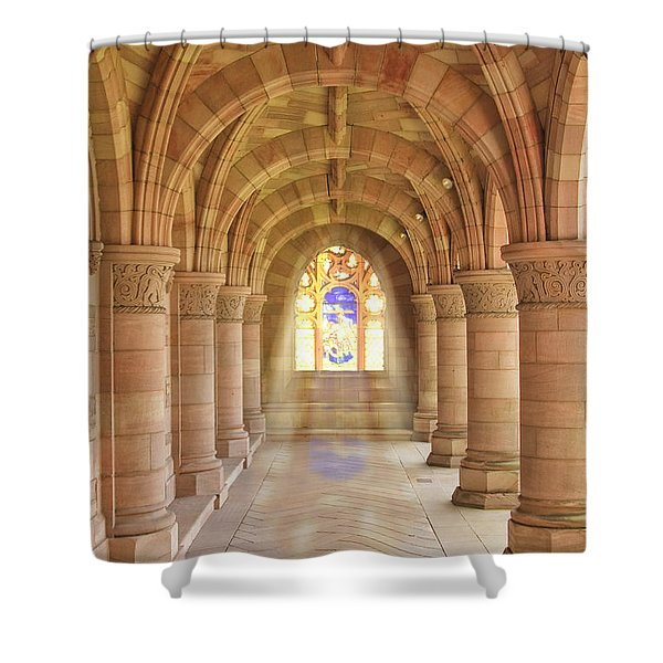 Kelso Abbey Stained Glass Shower Curtain