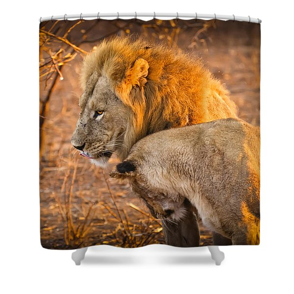 King And Queen Shower Curtain