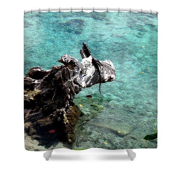King Of The Blue Lagoon 2 Shower Curtain