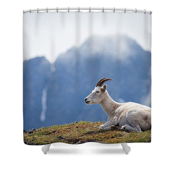 Mountain Prince Shower Curtain