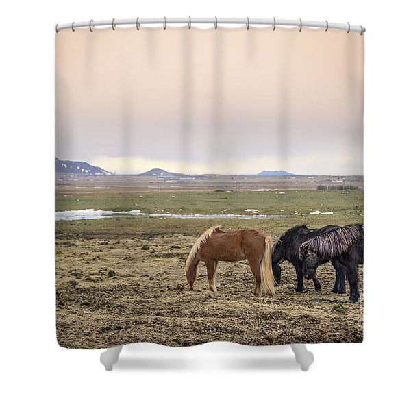 Kings Of The Nordic Twilight Shower Curtain