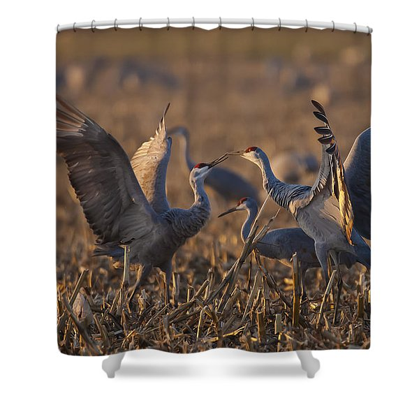 Kissing Sandhills Shower Curtain