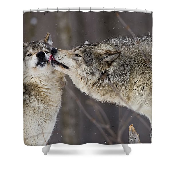 Kissy Face Shower Curtain