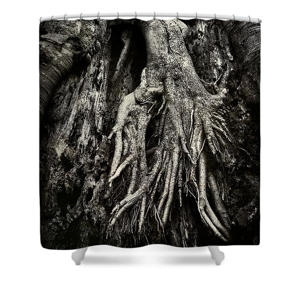 Kneeling At The Feet Of The Green Man Shower Curtain