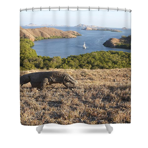 Komodo National Park Shower Curtain
