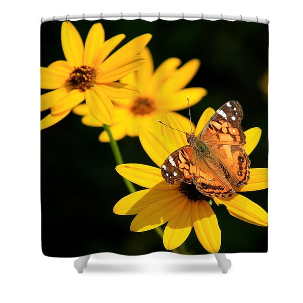 Sitting Pretty Butterfly Painted Lady Flower Art Shower Curtain