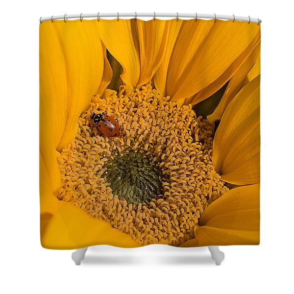 Ladybug In Sunflower Shower Curtain