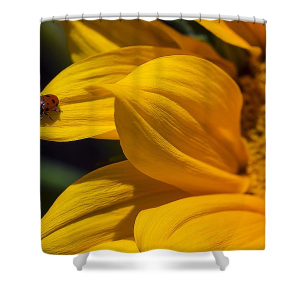 Ladybug On Sunflower Petal Shower Curtain